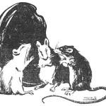 three singing mice